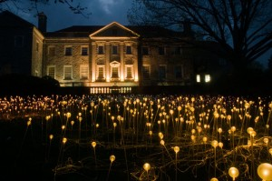 Bruce Munro at Cheekwood